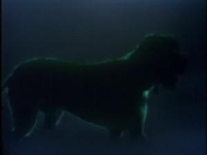 Собака (британская версия)