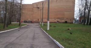 Здание бассейна (вид сбоку)